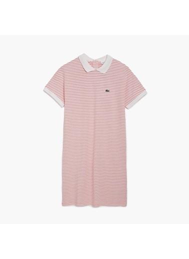 Lacoste Kadın Bebe Yaka Elbise EF5469.HHW Lacivert